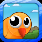 Big Eyed Bird Adventure